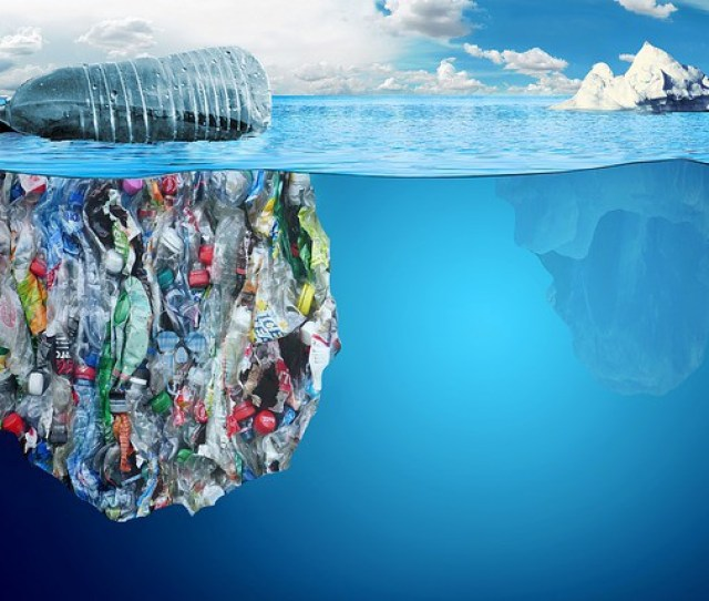 A P Plastic Bag A Short Story Highlighting The Horrendous Plastic Pollution In Our World Seas And Its Effect On Animals And Humans