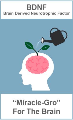 """En resumen, si decidiste no apretar el botón de """"Snoze"""", las cantidades de BDNF aumentaran la actividad de tu hipocampo. Y tal vez sientas que recuerdas mejor las cosas, tienes mejores ideas, etc. Tu cerebro estará sincronizado."""
