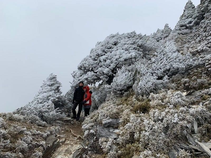 結霜的嘉明湖登山步道