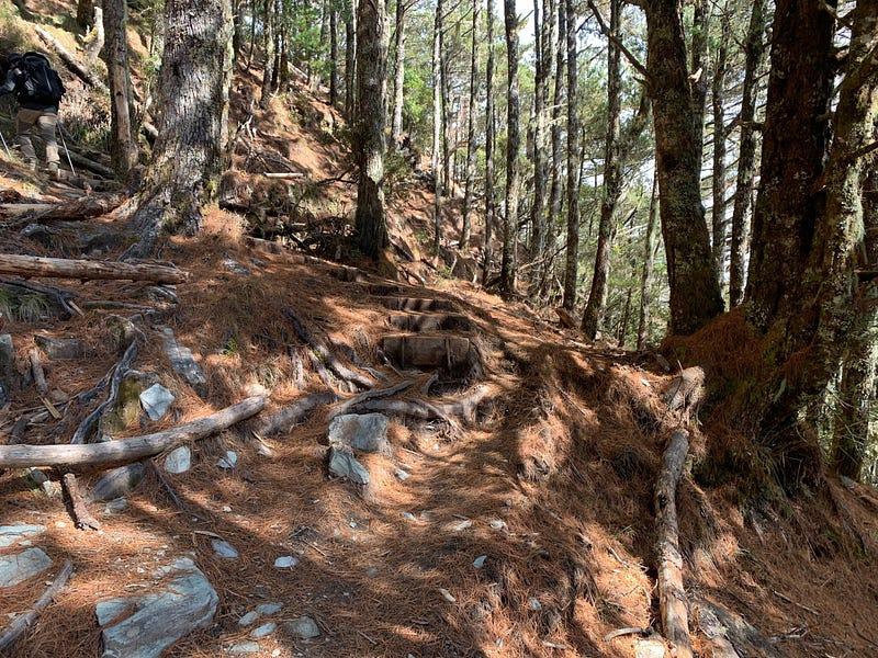 圖片說明:嘉明湖登山步道