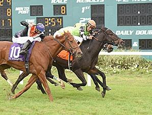 Lochte Triumphs In Tampa Bay Thriller Bloodhorse