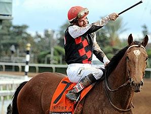 Ties Atop Tjc S Experimental Free Handicaps Bloodhorse