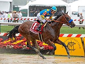 American Pharoah Romps In Preakness Stakes Bloodhorse