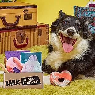 First Super Chewer Dog Box $15 Shipped