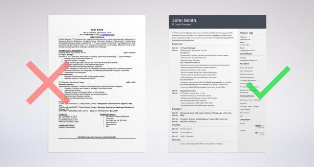Best Resume Format 11 (11+ Professional Samples)