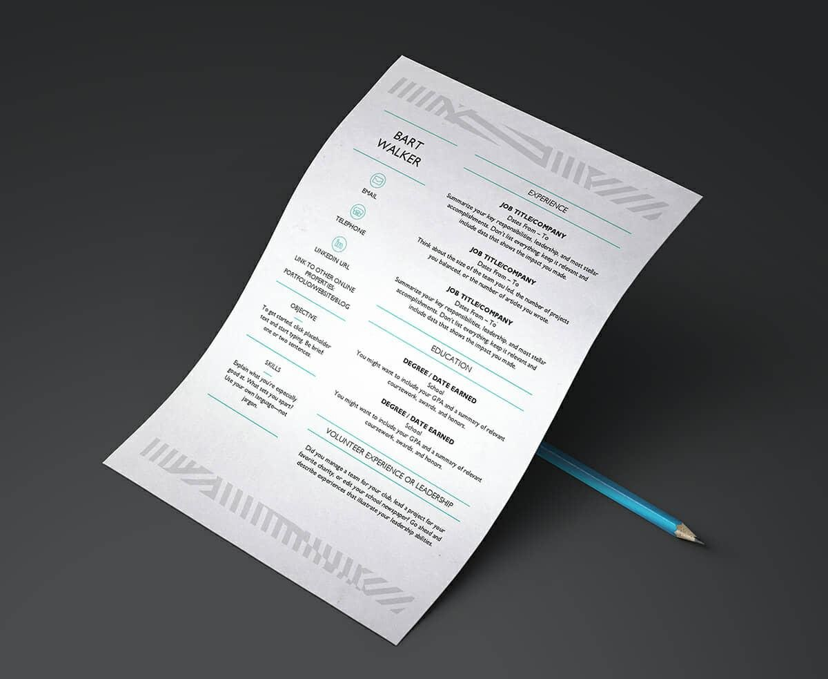 Resume Templates for Word  FREE   15  Examples for Download microsoft word resume template with creative pattern