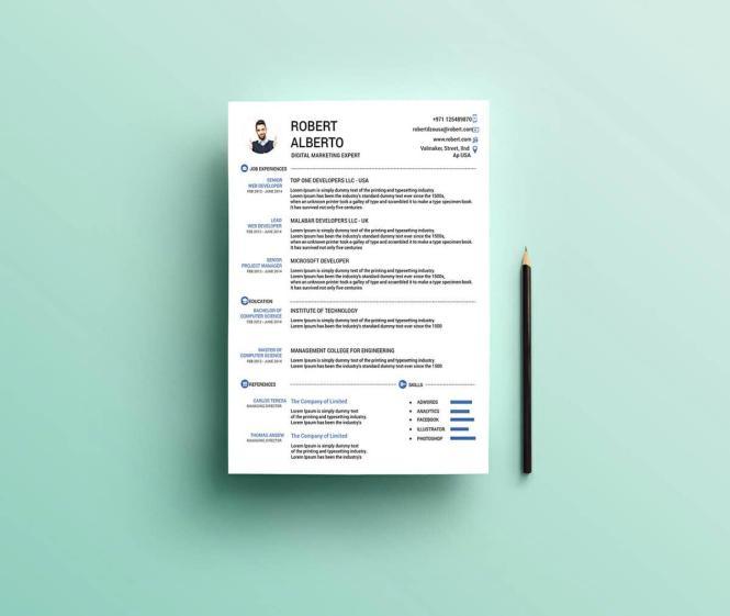 free creative resume templates microsoft word