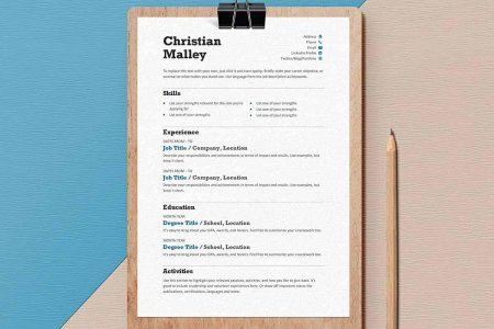Ms Word Resume Templates  Image Gallery Of Creative Decoration     Resume Templates For Word Free Examples For Download