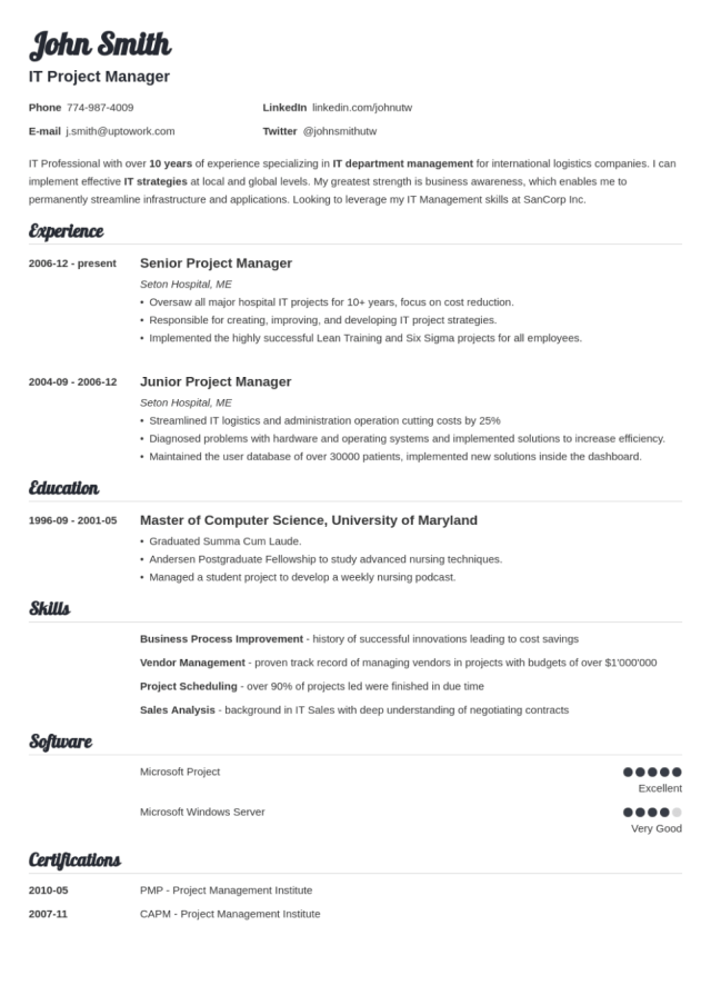 13+ Professional Resume Templates: Try for Free & Download