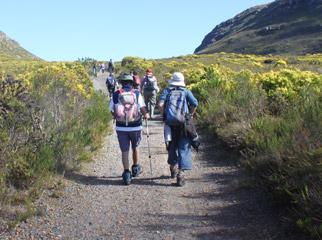 Cape Escape - Hiking Silvermine
