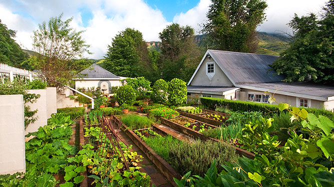 KwaZulu Natal - Cleopatra Mountain Farmhouse