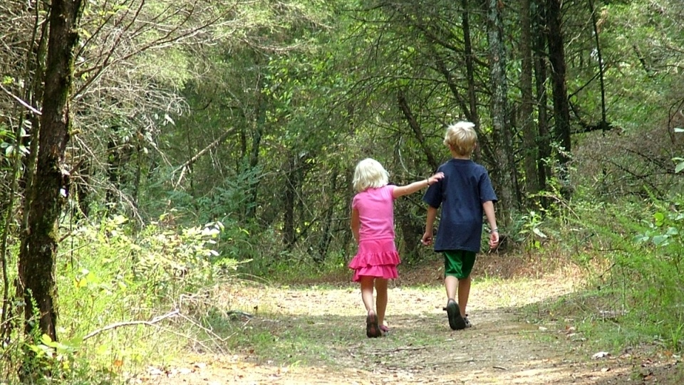 brother-and-sister-walk-in-woods-1-1431880