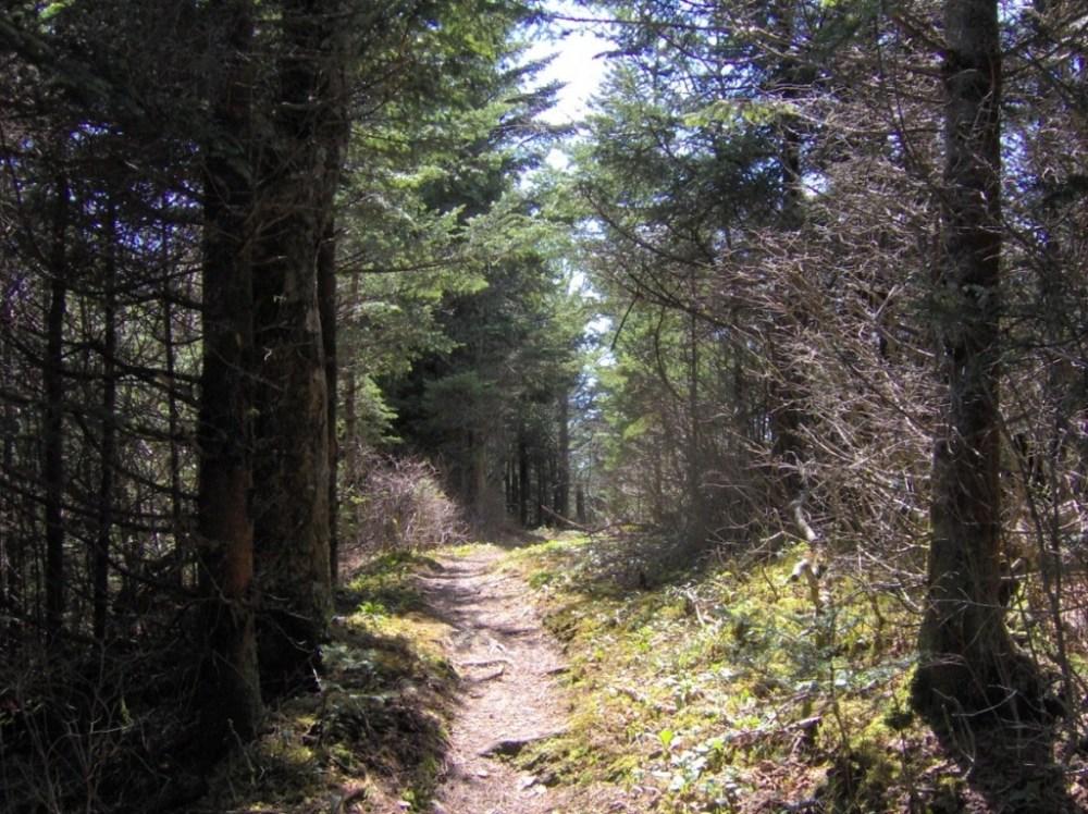 travel the appalachian trial