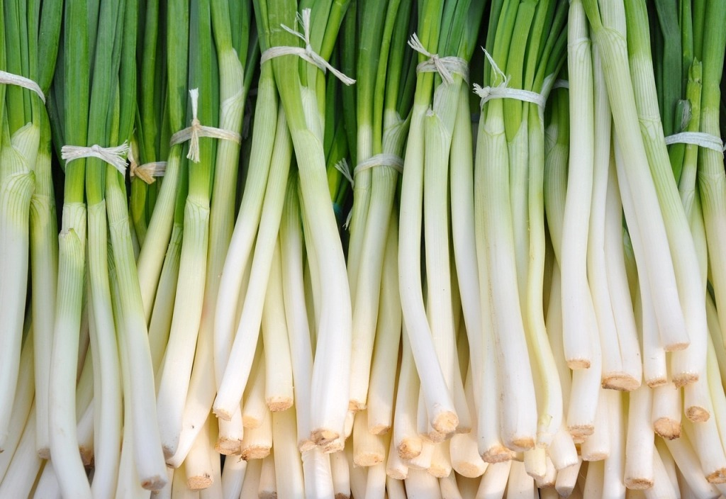 alliums are cancer-fighting foods