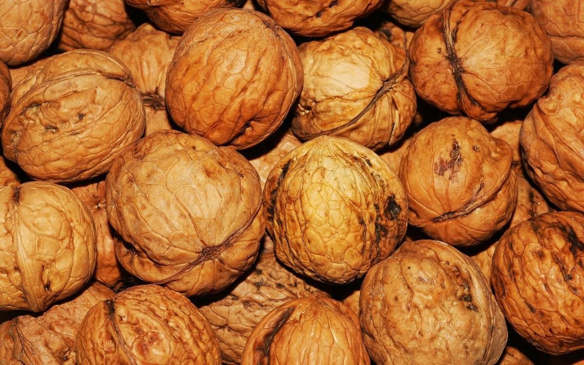 walnut-101425_1280