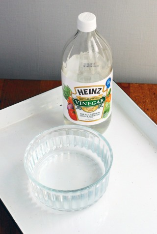 Vinegar Cleans Dishwasher