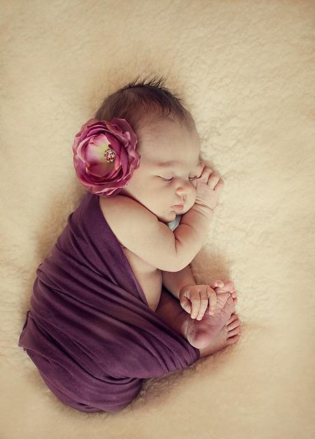 newborn+photographs+1