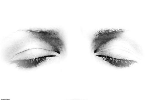 oculos-foco-olhos-veganismo-visão