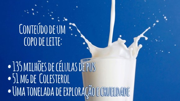 Milk splash