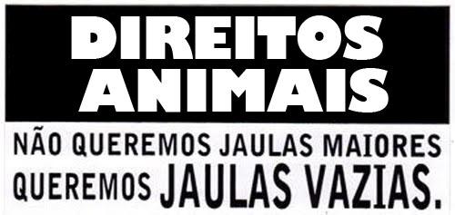 animais-tem-direitos-direitos-humanos-animais-maus-tratos