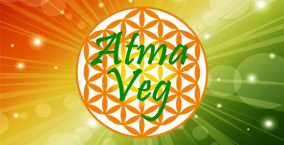 taubate-tem-o-primeiro-fast-food-vegano-brasil-atma-veg-vegetarianismo-taubaté-lanchonete-vegetariana-vegana-vale-paraíba-são-paulo-camaleão-mandiokejo