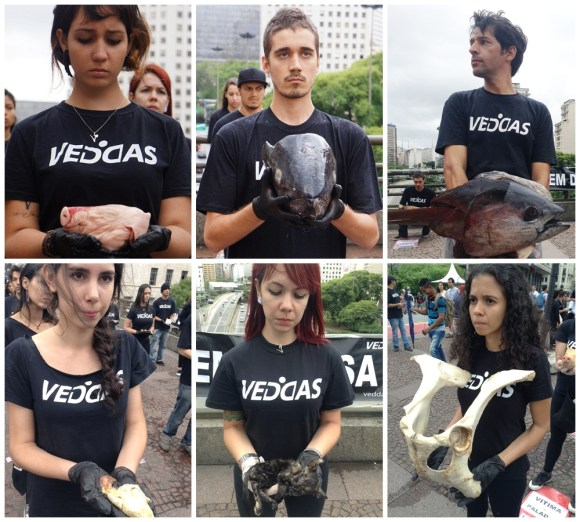 veddas-faz-protesto-impactante-em-sao-paulo-dida-2014-voluntários-animais