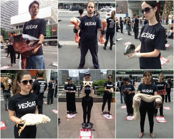 veddas-vegetarianismo-etico-direitos-animais-são-paulo-capital-abolicionismo