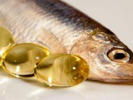 Image result for fatty fish good for the liver
