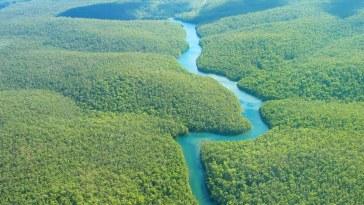 Direct environnement / Ici on agit ! . La planète n'a presque plus de terres vierges