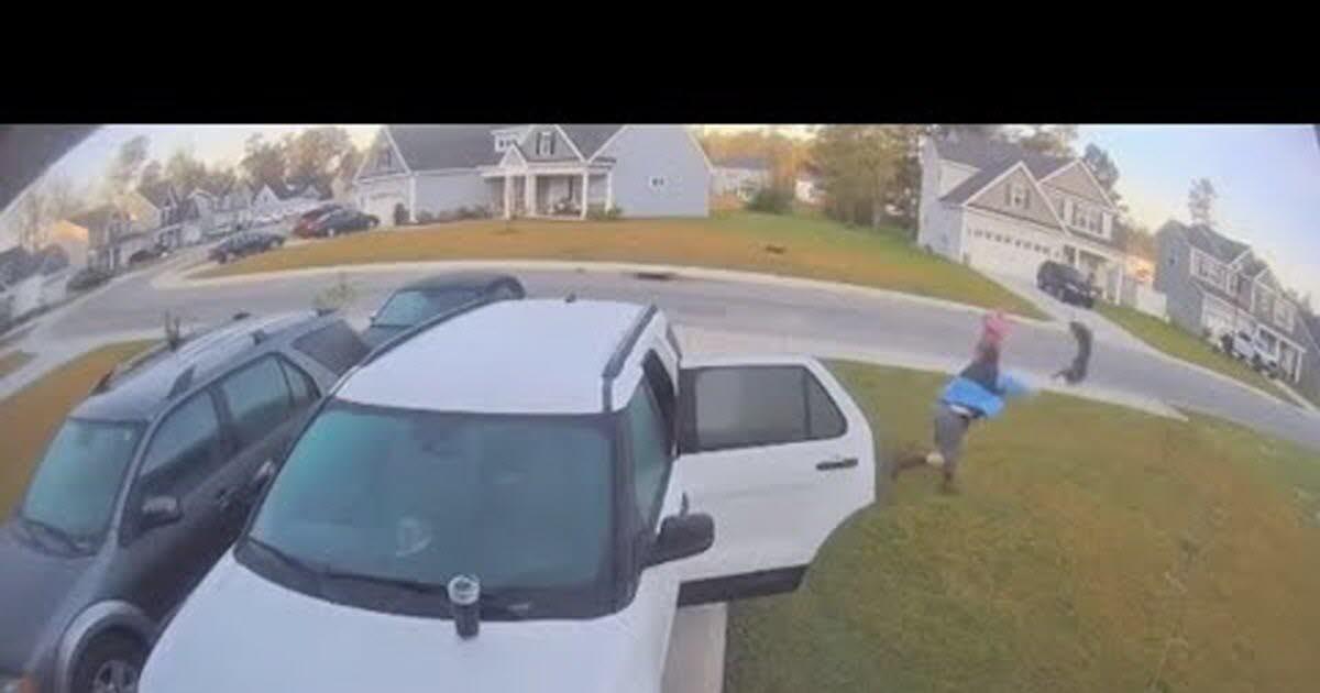 Etats-Unis. Un lynx enragé attaque une femme, la vidéo devient virale