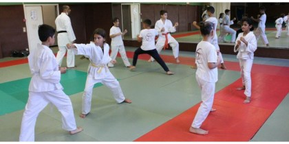 Saint-Paul-Trois-Châteaux.  Tatami Evaluations for Karate Fanatics