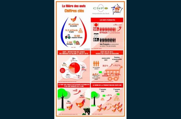 CNPO инфографики
