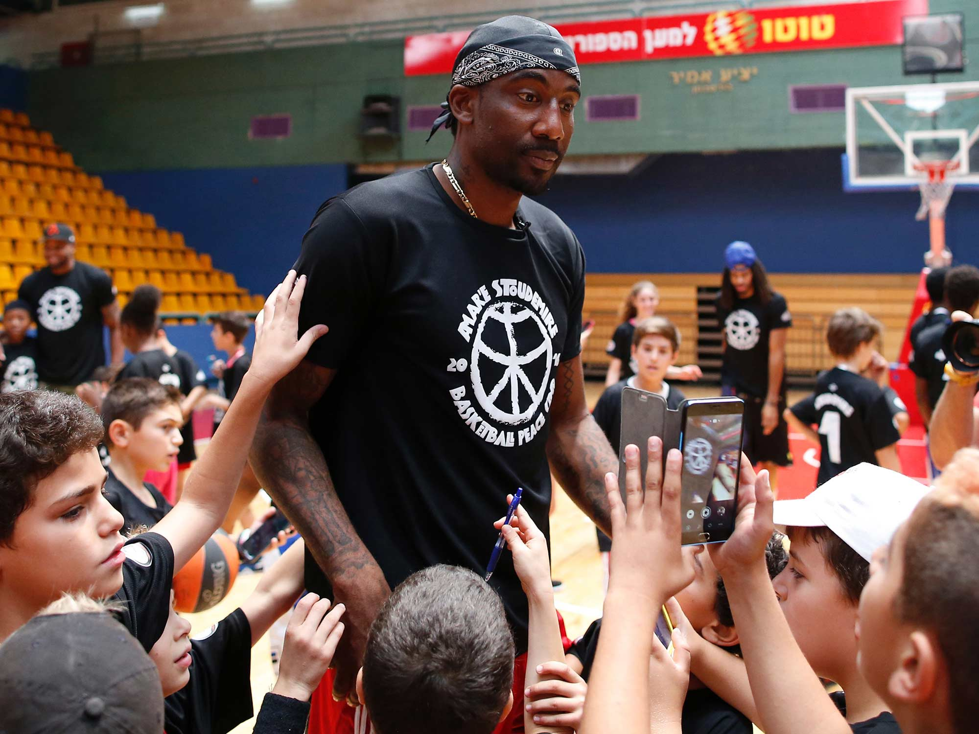 Image result for amar'e stoudemire2017
