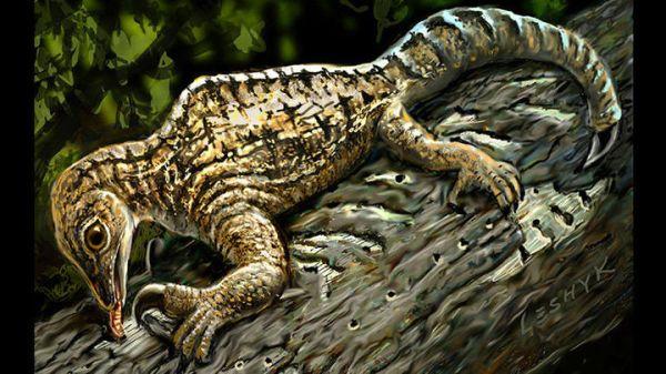 Новая окаменелость странной рептилии продемонстрировала ...