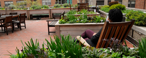 hospital rooftop gardens Victory Greens, Lenox Hill Hospital's rooftop garden, has