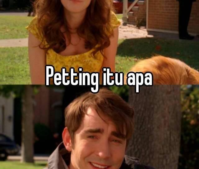 Petting Itu Apa