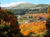 El Ayuntamiento de Tarazona oferta tres rutas para disfrutar del paisaje de otoño en el Moncayo