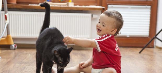 Un bebé y un gato