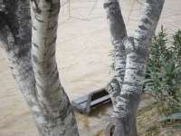 Aplazado el desalojo provisional de Pina de Ebro
