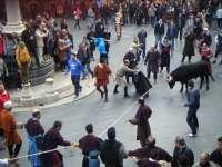 IU critica que el borrador del reglamento taurino no protege los derechos de los animales frente al maltrato