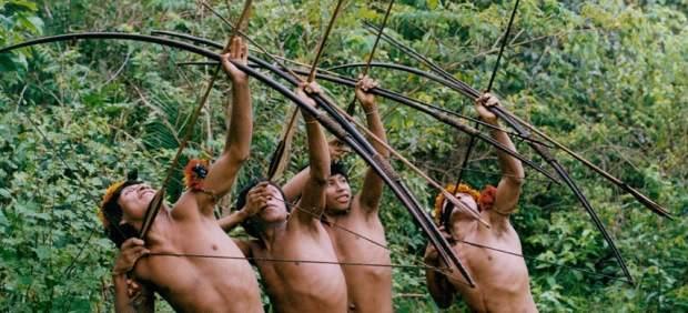 Guerreros Awá, cazando