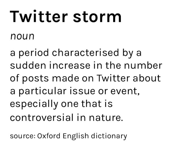 Graphic of definition of Twitter storm