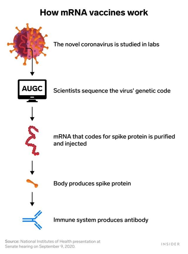 mRNA vaccines