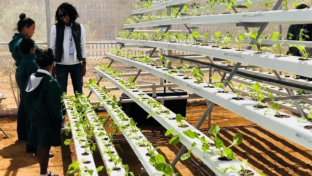 A hydroponic farm located in Touwsrivier.