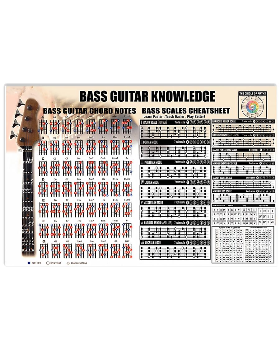 bass guitar knowledge chords notes 17x11 poster size white