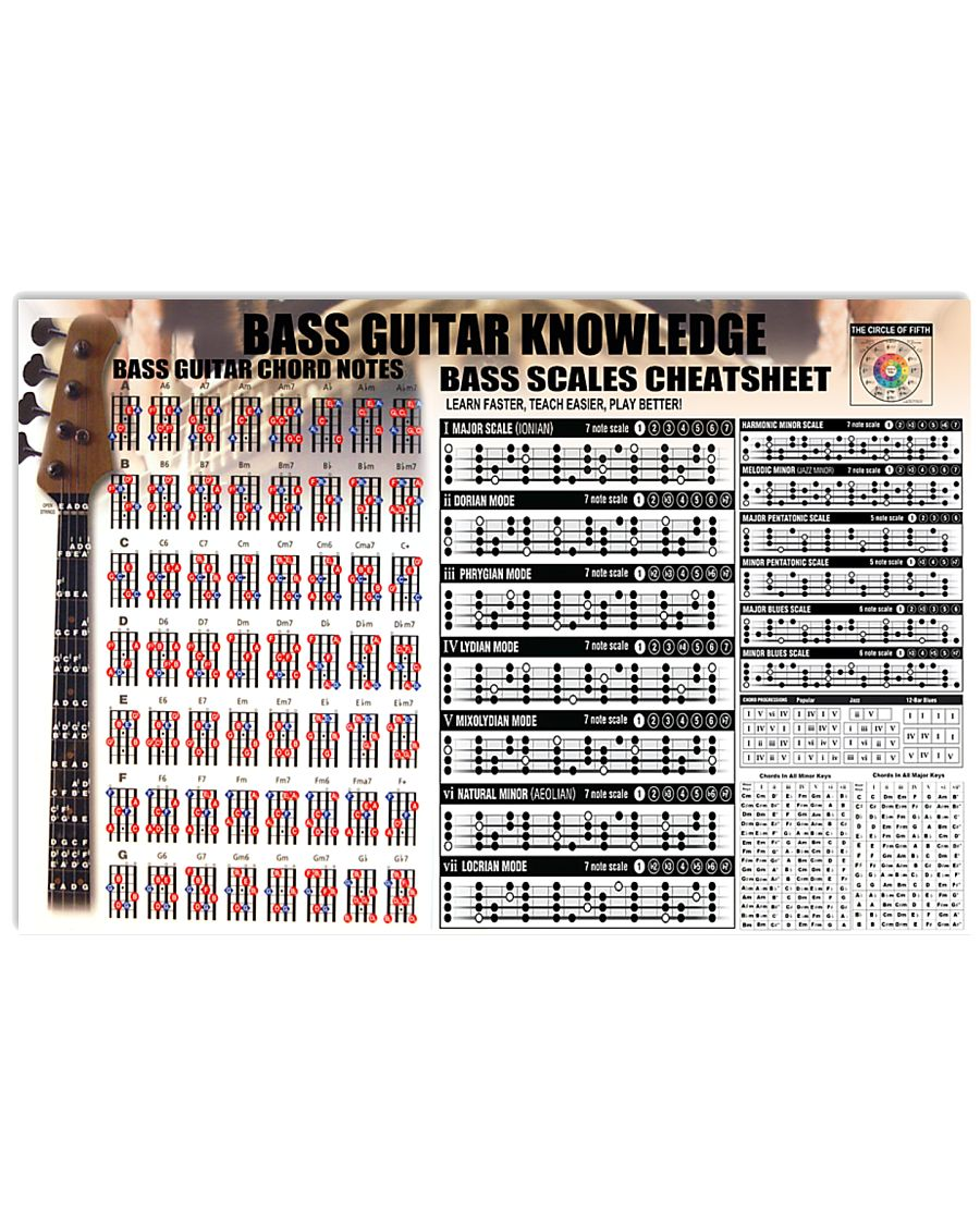 bass guitar knowledge 24x16 poster size forest green