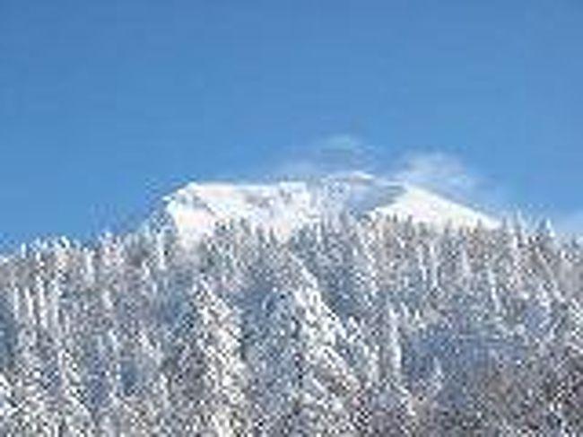 『旭川の冬景色』旭川(北海道)の旅行記・ブログ by 雪おとこさん【フォートラベル】