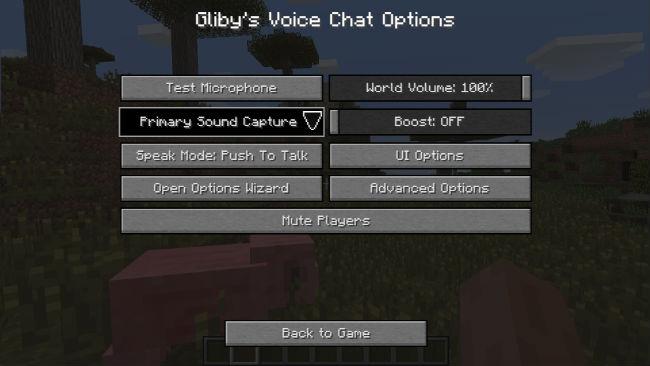 Voice-Chat-Mod-5.jpg