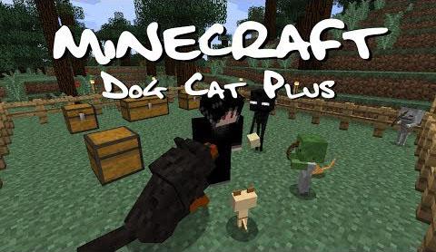 Dog-Cat-Plus-Mod.jpg