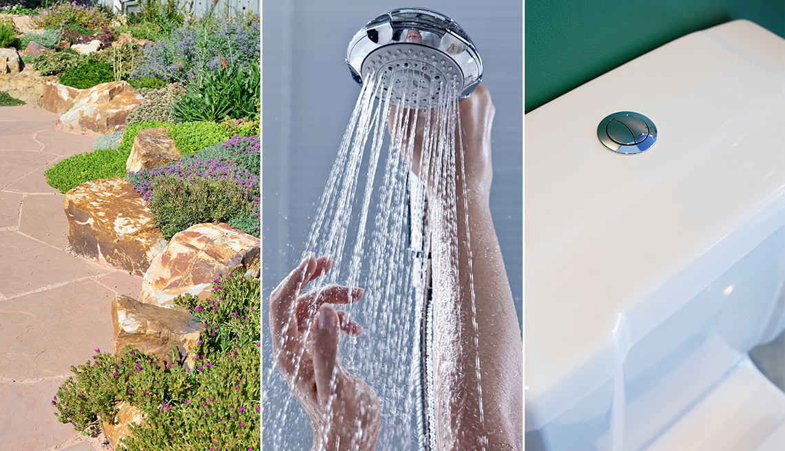 a hardscaped yard area with drought friendly plants a pair of hands holding shower head and a dual-flush toilet cistern